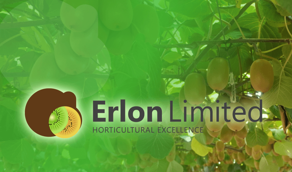 Erlon Limited